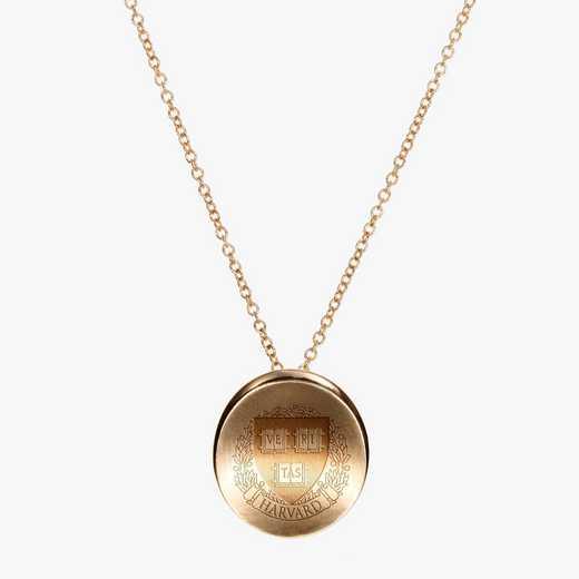 HAR0113AU: 14k Yellow Gold Harvard Organic Necklace by KYLE CAVAN