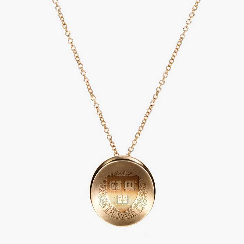 HAR0113AU: 14k Yellow Gold Harvard Organic Necklace by KYLE CAVAN