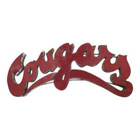 COUGARSWD: LRT Wash St Cougars Metal Décor