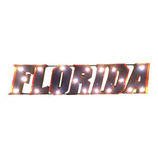 FLWDLGT: LRT Florida Metal Décor Lighted