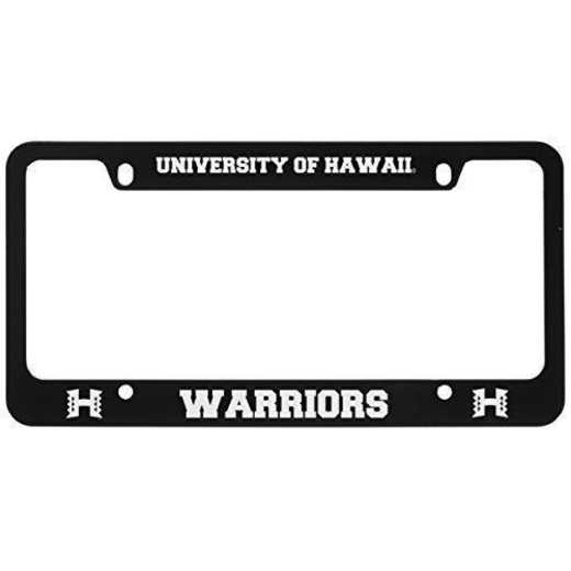 SM-31-BLK-HAWAII-1-LRG: LXG SM/31 CAR FRAME BLACK, Hawaii
