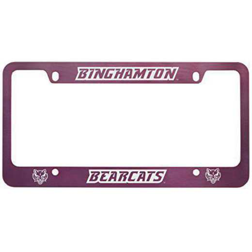 SM-31-PNK-BNGHMTN-1-SMA: LXG SM/31 CAR FRAME PINK, Binghamton