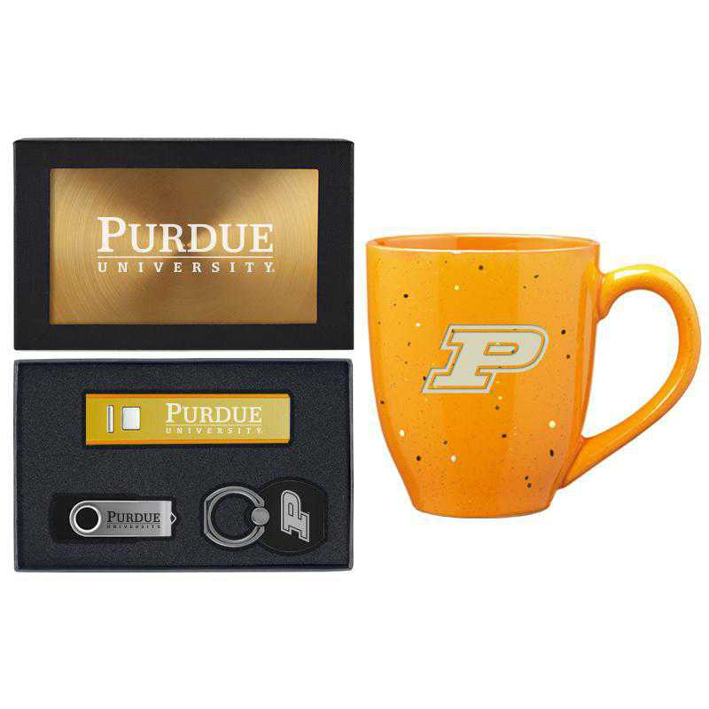 SET-A2-PURDUE-GLD: LXG Set A2 Tech Mug, Purdue