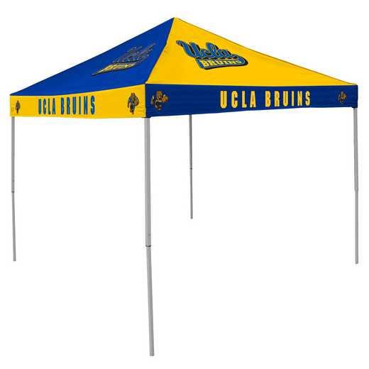 229-42C: UCLA CB Canopy