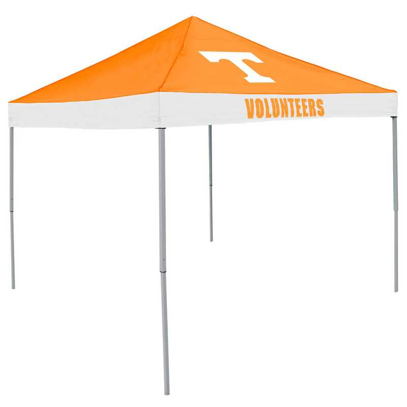 217-39E: Tennessee Economy Canopy