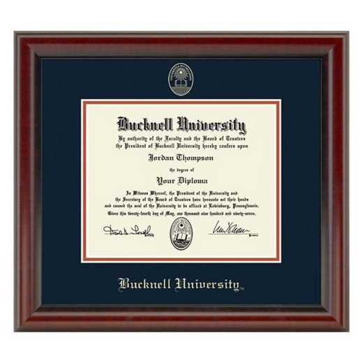 615789563860: Bucknell University Diploma Frame- the Fidelitas