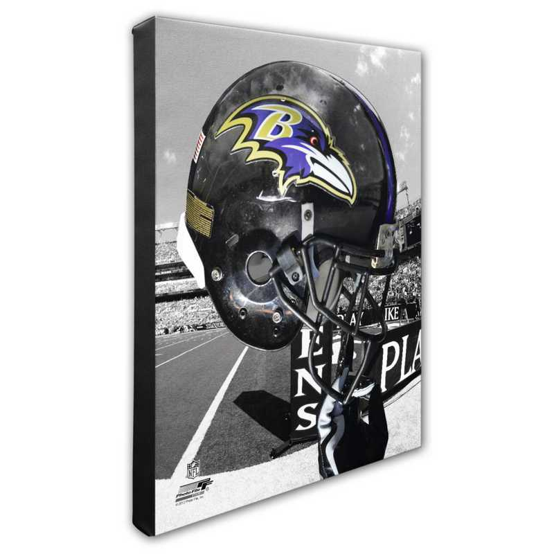 AAPD109-CS16x20: PF Baltimore Ravens Team Helmet Photography- 16x20