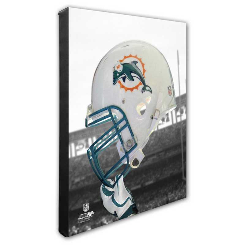 AAPD118-CS16x20: PF Miami Dolphins Team Helmet Photography- 16x20