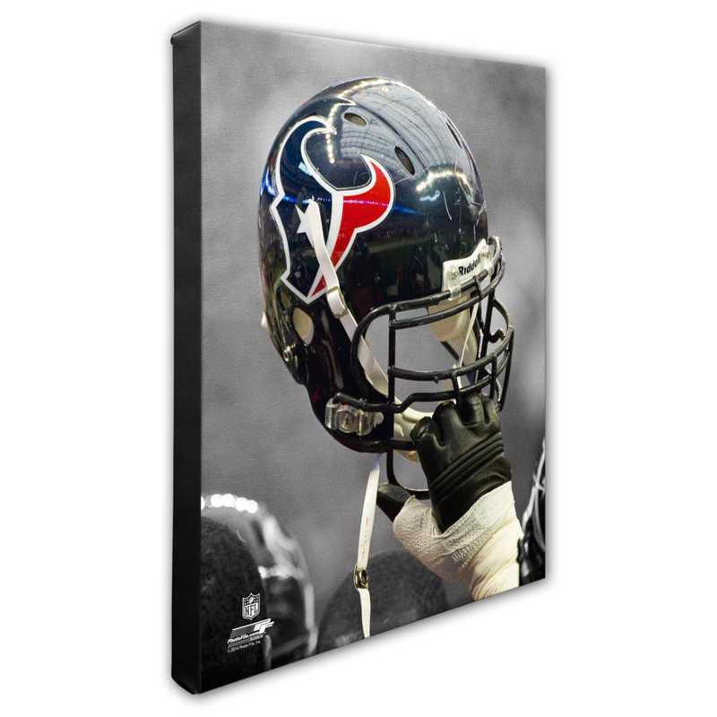 AARJ206-CS16x20: PF Houston Texans Team Helmet Photography- 16x20