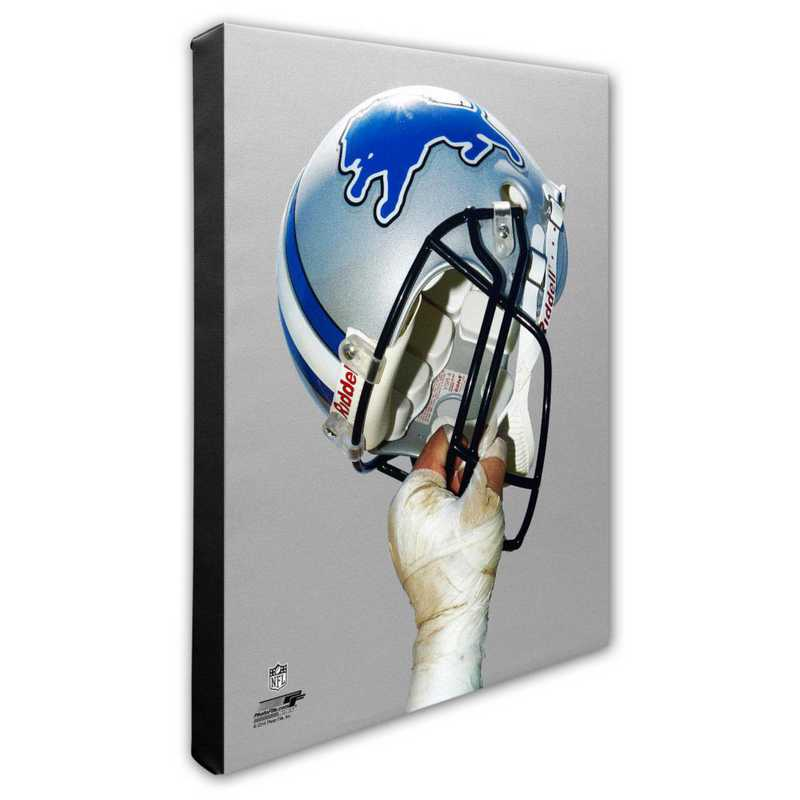 AARK158-CS16x20: PF Detroit Lions Team Helmet Photography- 16x20