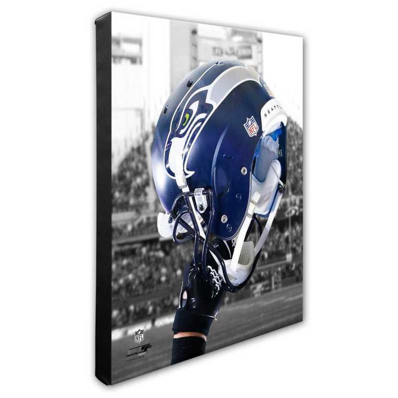 AARZ023-CS16x20: PF Seattle Seahawks Team Helmet Photography- 16x20