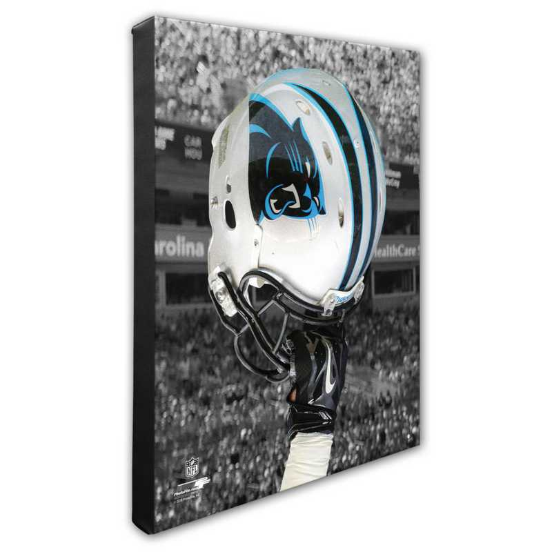 AASN155-CS16x20: PF Carolina Panthers Helmet Photography- 16x20