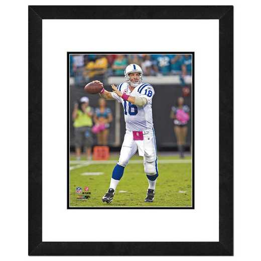 AAMU133-FH16x20: PF Peyton Manning Action Photography, 18x22