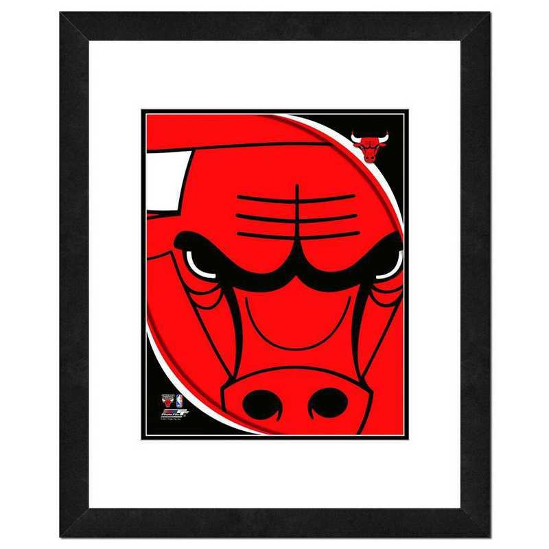 AANP213-FH16x20: PF Chicago Bulls Logo Photography, 18x22