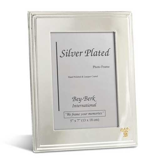 GM21471: Silver-plated 5x7 Frame with Medical Emblem and Easel Back