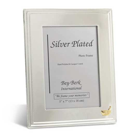 GM21473: Silver-plated 5x7 Frame with Pharmacy Emblem and Easel Back