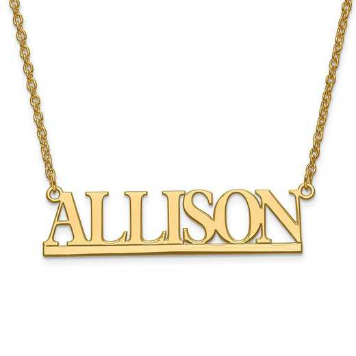 XNA630GP: Gold Plated/SS Laser Polished Nameplate with Chain