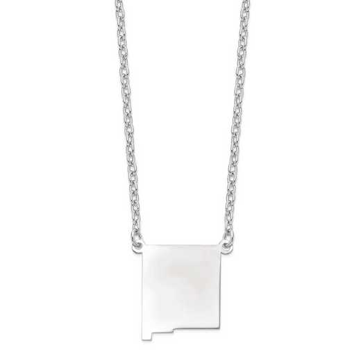 XNA706W-NM: 14k White Gold NM State Pendant with chain