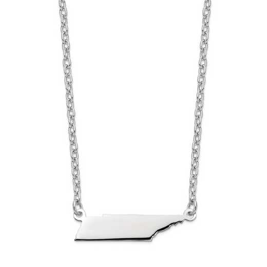 XNA706W-TN: 14k White Gold TN State Pendant with chain