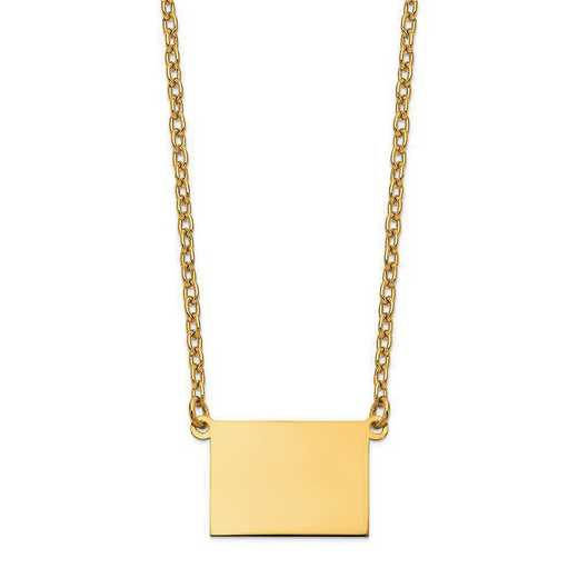 XNA706Y-CO: 14K Yellow Gold CO State Pendant with chain