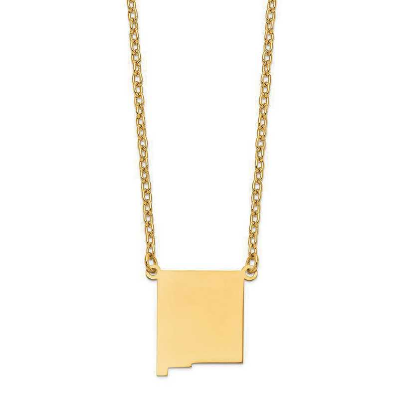 XNA706Y-NM: 14K Yellow Gold NM State Pendant with chain