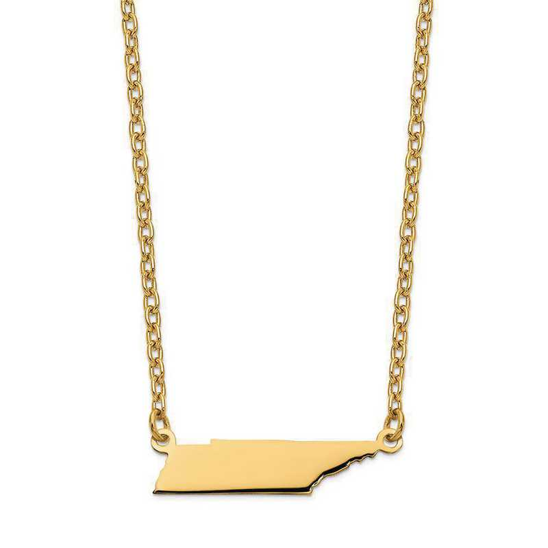 XNA706Y-TN: 14K Yellow Gold TN State Pendant with chain