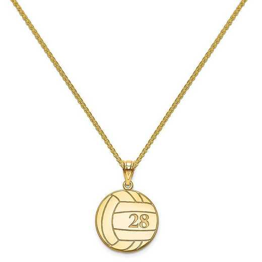 XNA696GP-QSP035G-18: Gold Plated/SS Laser Volleyball Number And Name Pendant