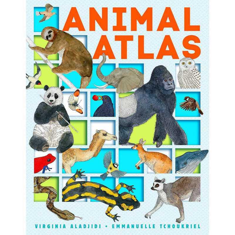 9781492641636: Animal Atlas