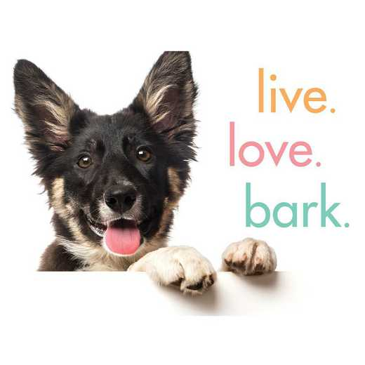 9781492657934: A fun spin on happiness quotes that includes our pets