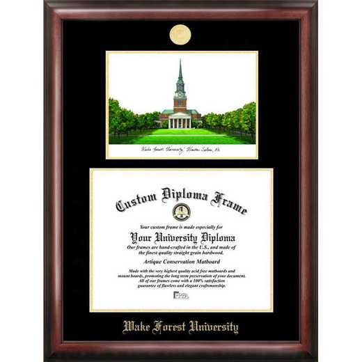 NC991LGED-1411: Wake Forest University 14w x 11h Gold Embossed Diploma Frame with Campus Images Lithograph