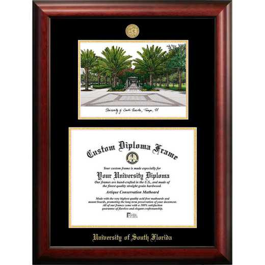FL989LGED-1185: University of South Florida 11w x 8.5h Gold Embossed Diploma Frame with Campus Images Lithograph
