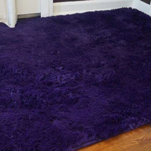S1-S2-1-1-SZ-ZN3-4X6: College Plush Rug - Downtown Purple - 4' x 6'