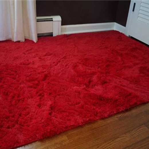 S1-S2-SZ-ZN4-4X6: College Plush Rug - Redder than Red - 4' x 6'