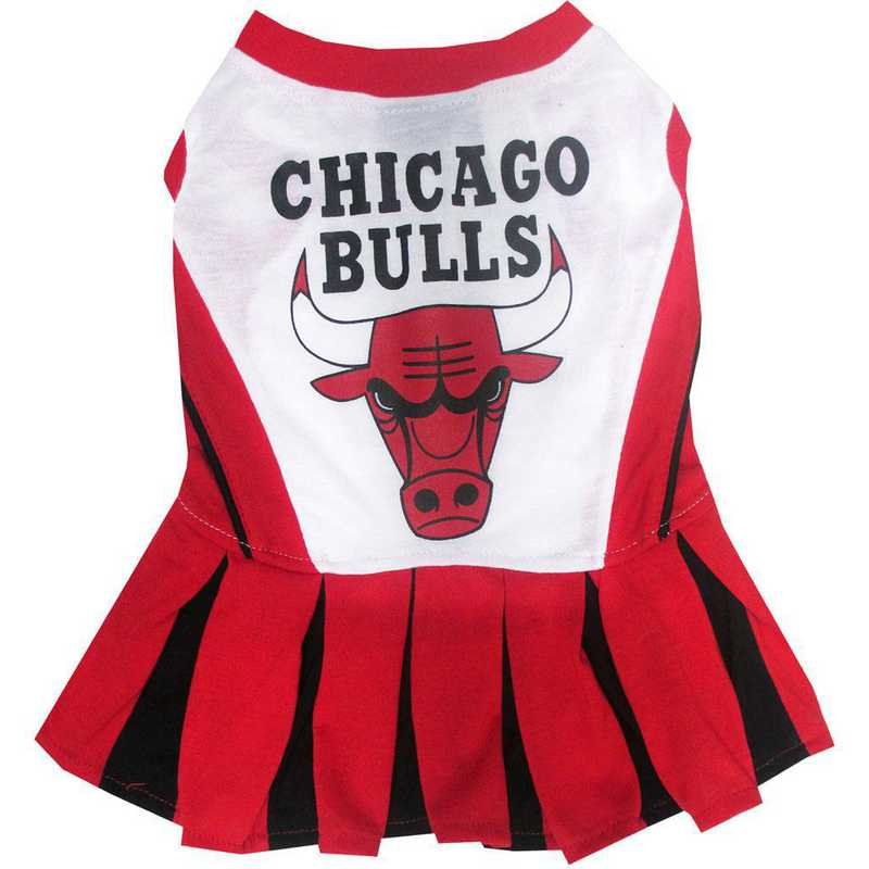 CHICAGO BULLS Pet Cheerleader Outfit