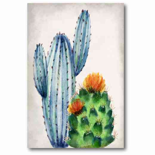 WEB-JV284: In the Desert Cactus 1 Canvas 12x18