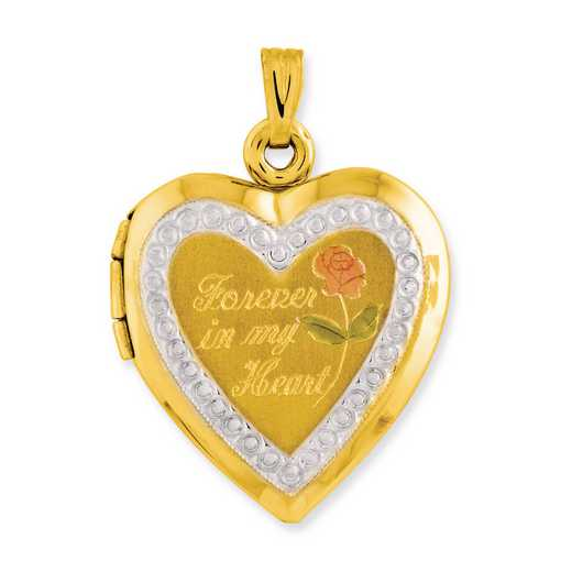 1CBEL18748: 10KT Two-Tone Polished Forever in my Heart Locket Charm
