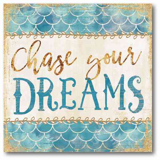 WEB-T721-16x16: Chase Your Dreams Canvas 16x16