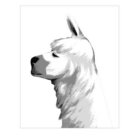 DEC-TYP343: Llama Profile Wall Decal 20x30