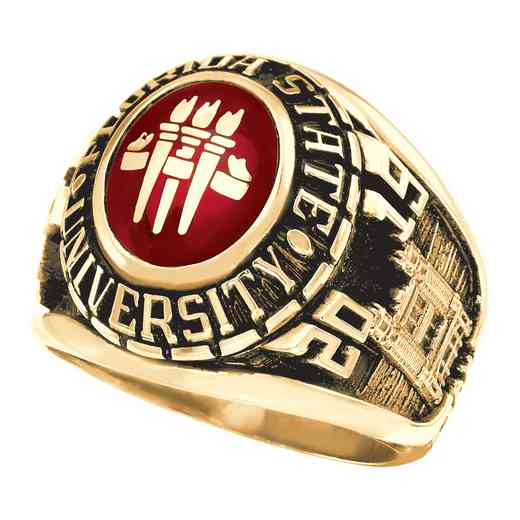 Florida State University - Class Rings, Yearbooks and Graduation