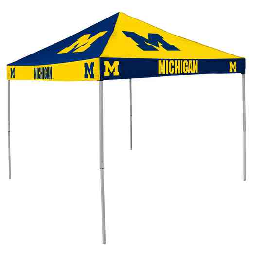 171-42C: Michigan CB Canopy