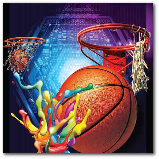 WEB-TS115-16x16: Basketball Matrix, 16x16