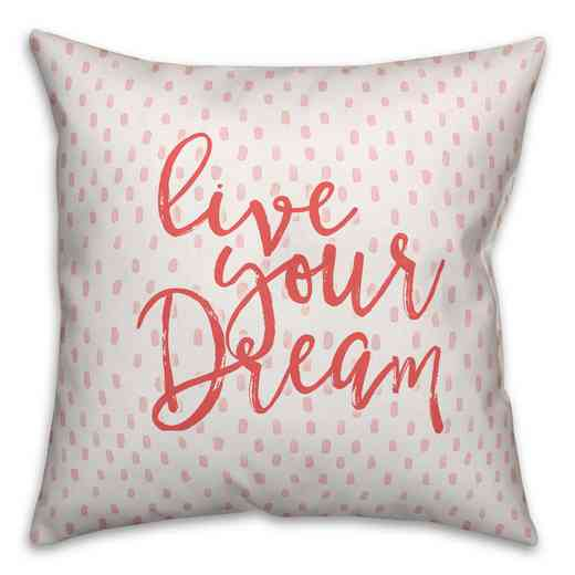 4627-AL: 18X18 Pillow Love Your Dream