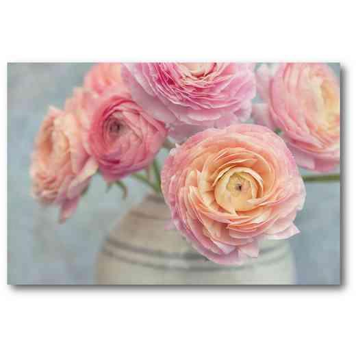 WEB-SC561-12X18: Ranunculus-Bouquet , 12x18