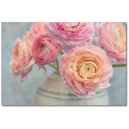 WEB-SC561-24X36: Ranunculus-Bouquet , 24x36