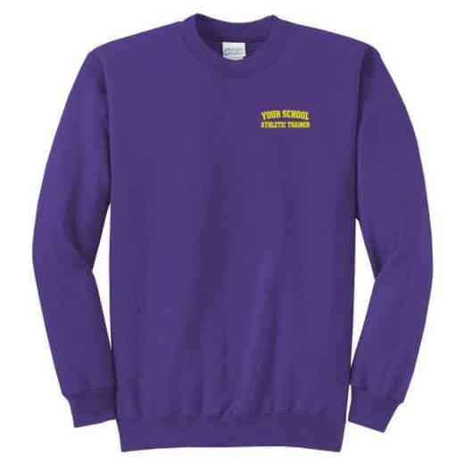 Athletic Trainer Youth Crewneck Sweatshirt