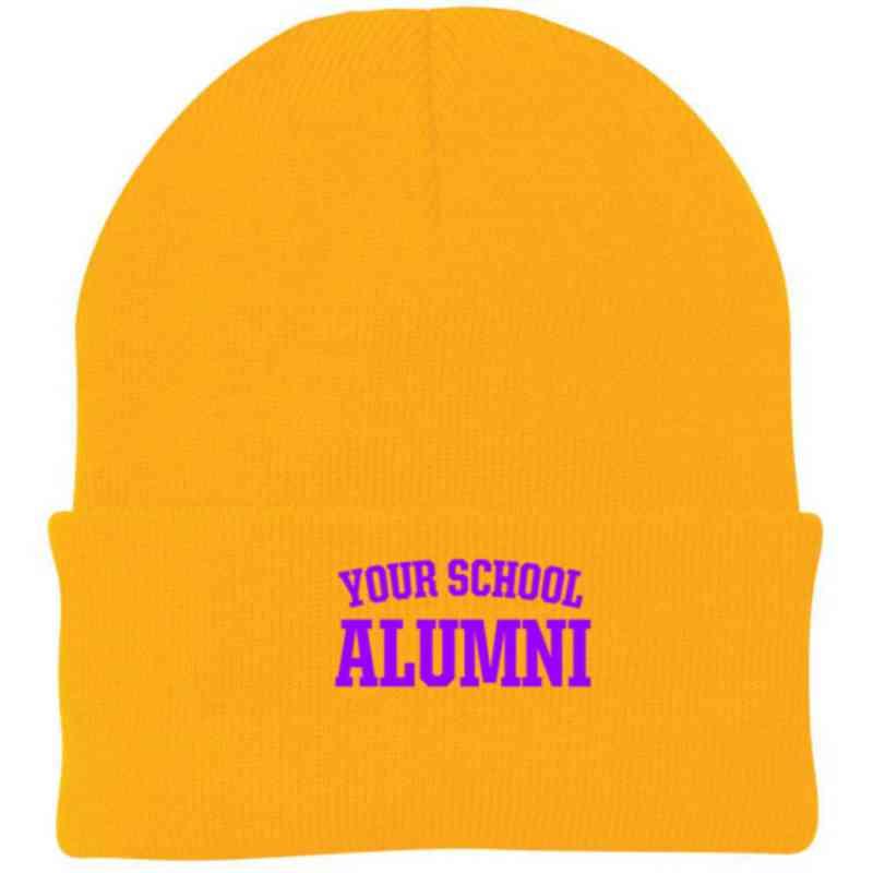 Alumni Embroidered Knit Folded Cuff Cap