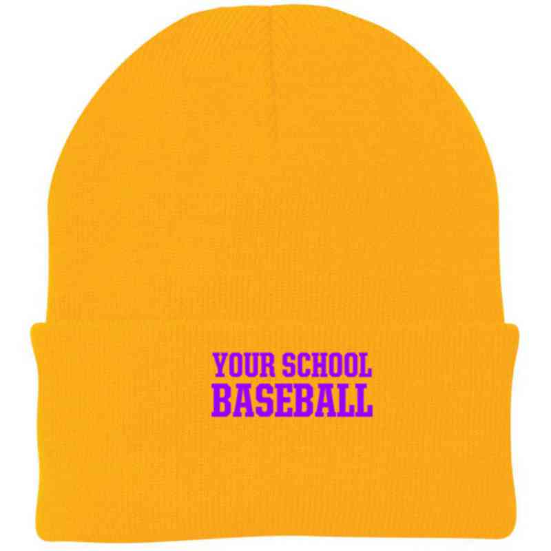 Baseball Embroidered Knit Folded Cuff Cap