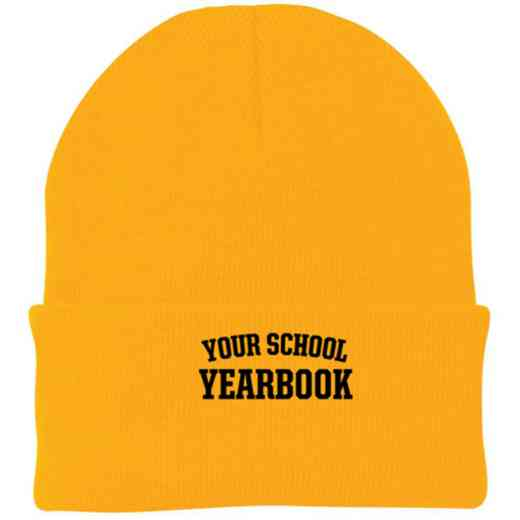 Yearbook Embroidered Knit Folded Cuff Cap