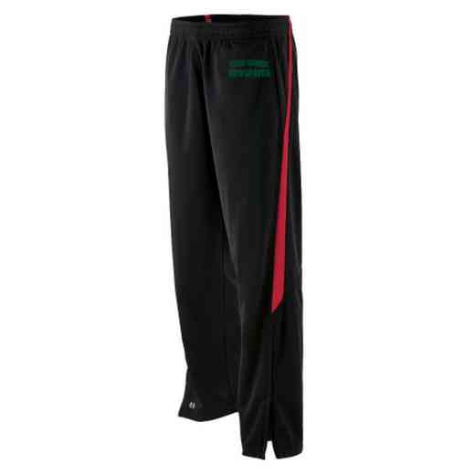 Newspaper Embroidered Youth Holloway Determination Pant
