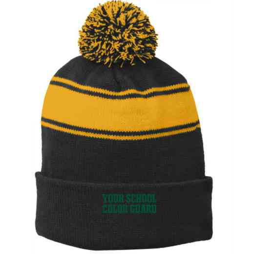 Color Guard Embroidered Pom Beanie